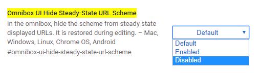 Omnibox UI Hide steady-state URL Scheme