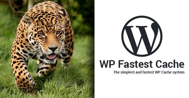 wp fastest cache plugin penting untuk blog