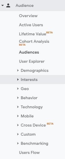 jenis report di bawah audience