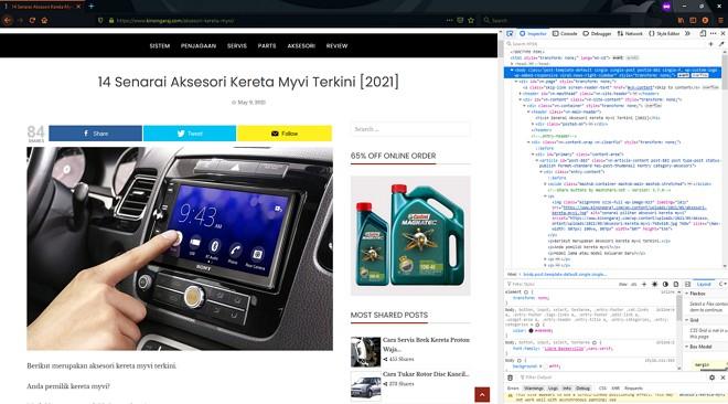 developer mode di browser